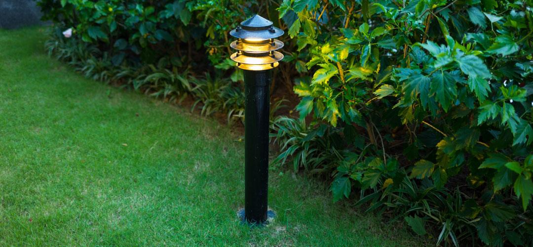 Backyard Eco-Friendly Solar Lights