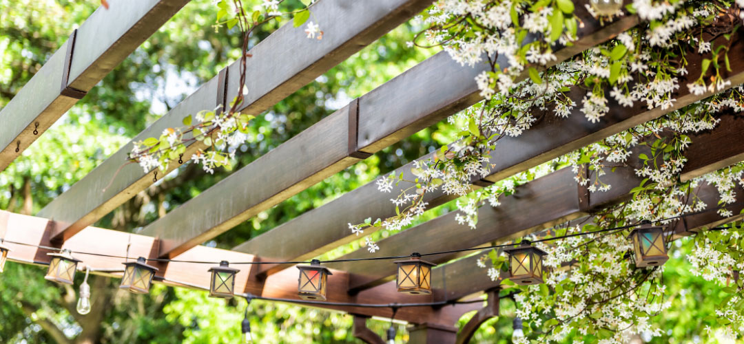Grow Star Jasmine Up the Sides and Top, Arbor for a Secret-Garden