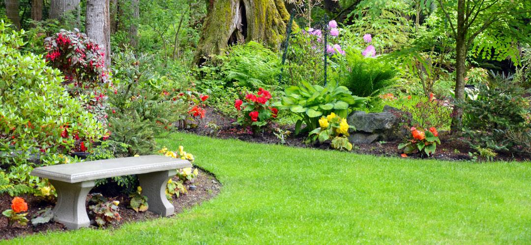 Bench, Lush Backyard Features