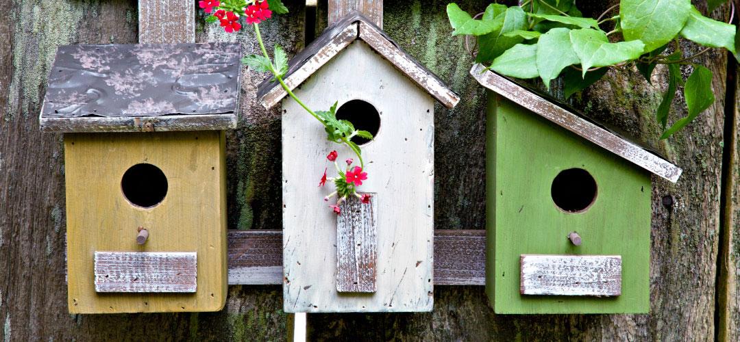 Paint Birdhouses, Backyard Ideas