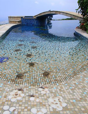 Deep Blue – Beach Entry, Tile Covered Pool, Turtle Mosaics