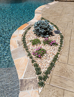 Natural – Stone Coping on Pool, Rocky Planted Flower Bed by Pool